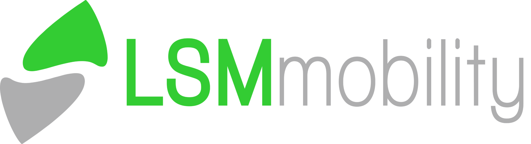 LSMmobility
